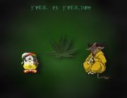 mm-free.jpg