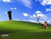 tux-born-2-frag-XP.jpg